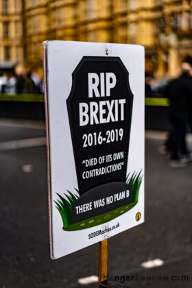 RIp Brexit poster