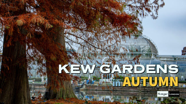 Kew Gardens in Autumn