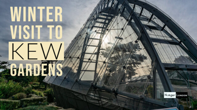 visit kew gardens in winter
